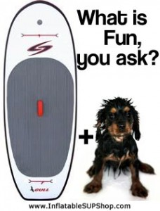 Surftech Gull SUP with Wet Dog